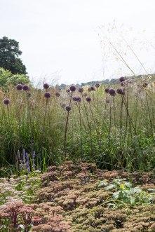 trentham gardens Piet Oudolf